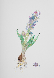 花に聞く展-